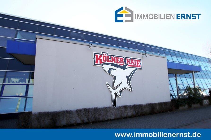 Kölner Haie Trainingszentrum Immobilienmakler Köln Immobilienverkauf Köln Immobilie Erfolgreich Zum Besten Preis Verkaufen
